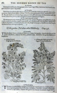 The Herball or Generall Historie of Plantes (1597) p782